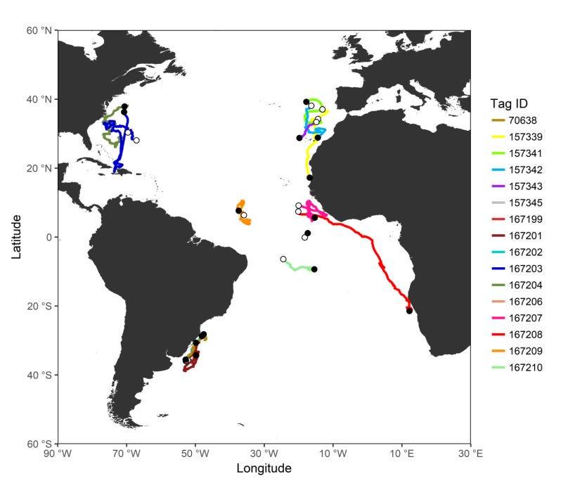 Habitat Use and Migrations of Shortfin Mako in the Atlantic Using Satellite Telemetry